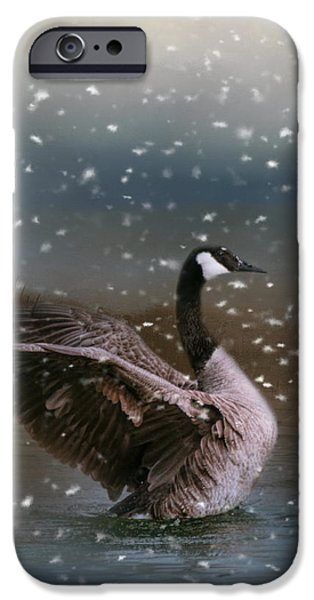 Snowy Swim IPhone 6s Case by Jai Johnson