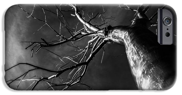 Split Black And White IPhone Case by Pelo Blanco Photo