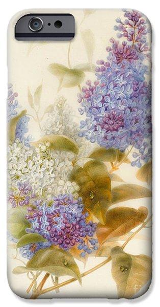 Spray Of Lilac IPhone Case by Pauline Gerardin