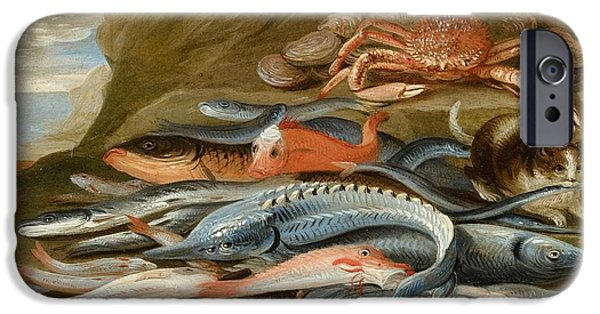 Still Life With Fish IPhone Case by Jan van