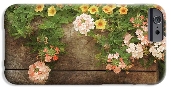 Summer Blossoms IPhone Case by Kim Hojnacki