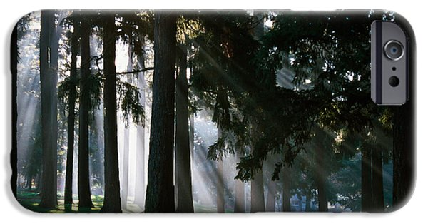 Sunbeams Through Misty Trees, Oregon IPhone Case by Panoramic Images