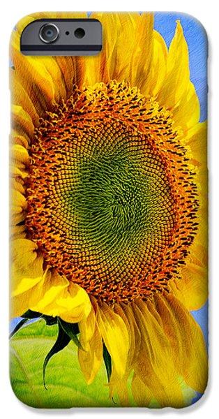 Sunflower - Good Morning Sunshine IPhone Case by Christina Rollo