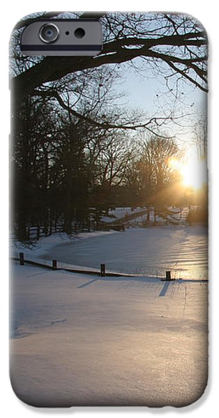 Sunlight On A Frozen Pond  IPhone Case by Clay Cofer