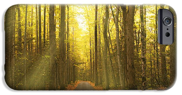 Sunny Roaring Fork Road IPhone Case by Jonas Wingfield