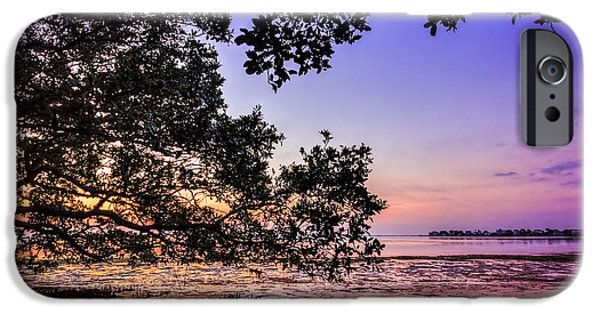 Sunset Under The Mangroves IPhone Case by Marvin Spates