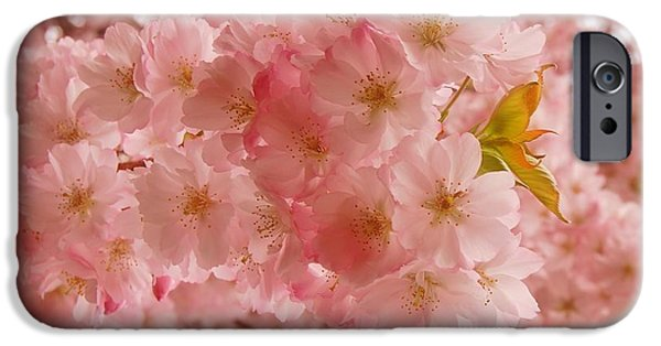 Sweet Pink- Holmdel Park IPhone Case by Angie Tirado