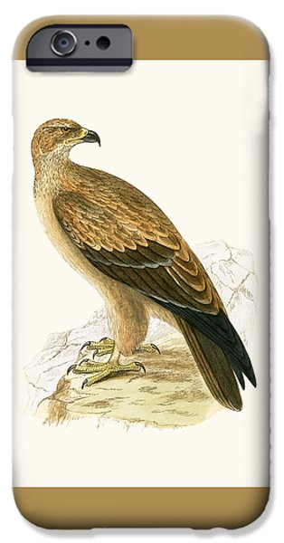 Tawny Eagle IPhone 6s Case by English School