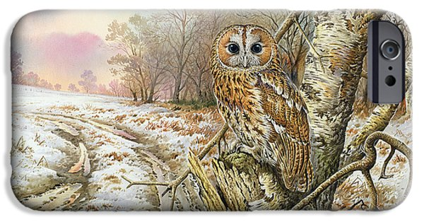 Tawny Owl IPhone 6s Case by Carl Donner
