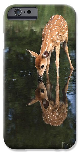 That Must Be Me IPhone Case by Sandra Bronstein