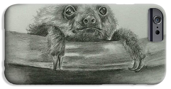 The Baby Sloth IPhone Case by Terry Ganey