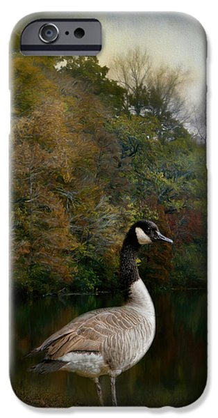 The Canadian Goose IPhone 6s Case by Jai Johnson