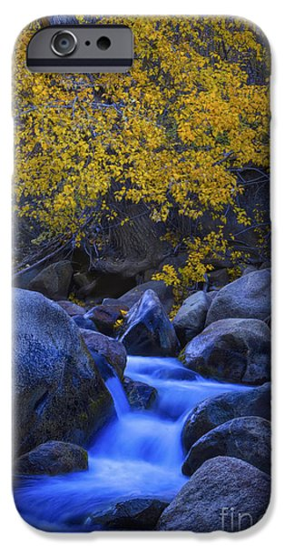 The Carson River West Fork Autumn IPhone Case by Mitch Shindelbower
