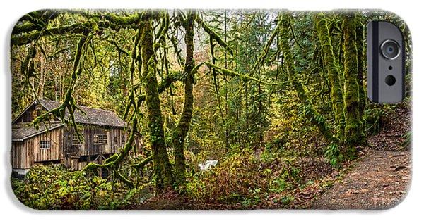 The Cedar Creek Grist Mill Trail IPhone Case by Jamie Pham