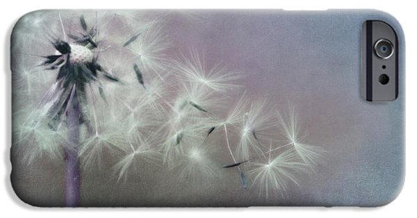 The Four Winds IPhone Case by Priska Wettstein