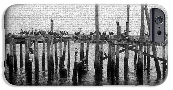 The Old Cedar Key Pier IPhone Case by David Lee Thompson