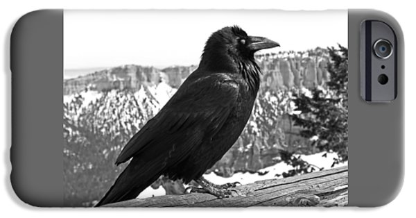 The Raven - Black And White IPhone 6s Case by Rona Black