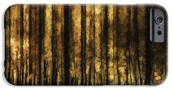 The Silent Woods IPhone Case by Scott Norris
