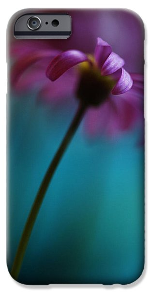 The View Above IPhone Case by Kym Clarke