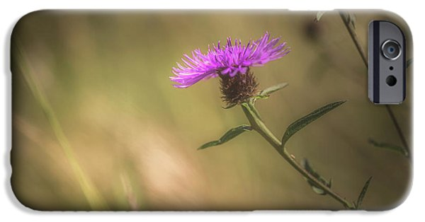 Thistle IPhone Case by Chris Fletcher
