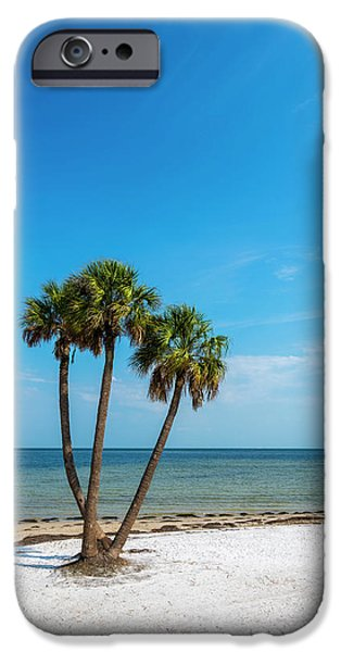 Three Palms IPhone Case by Marvin Spates