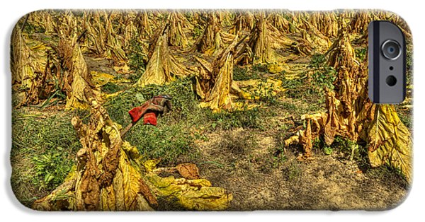 Tobacco Patch IPhone Case by Wendell Thompson