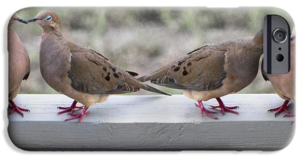 Together For Life IPhone 6s Case by Betsy Knapp