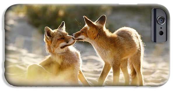 Togetherness - Mother And Kit Moment IPhone Case by Roeselien Raimond