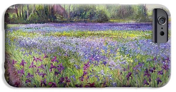 Trackway Past The Iris Field IPhone 6s Case by Timothy Easton