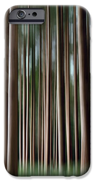 Tree Trunks IPhone Case by Wim Lanclus