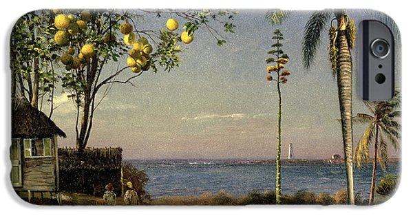 Tropical Scene IPhone 6s Case by Albert Bierstadt