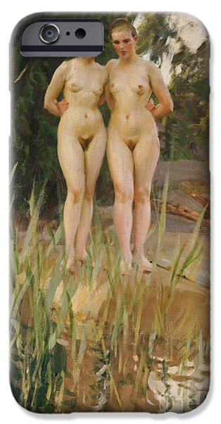 Two Friends  IPhone Case by Anders Leonard Zorn