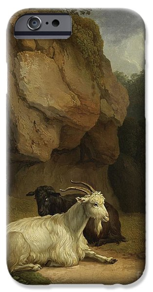 Two Goats On A Rocky Ledge IPhone Case by Celestial Images