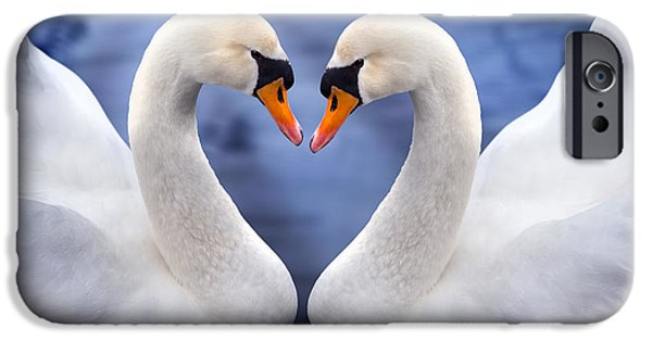 Two Swans IPhone Case by Simon Kayne