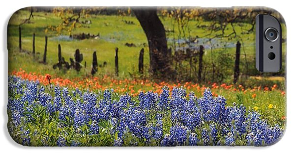 Tx Tradition, Bluebonnets IPhone Case by Lisa Spencer