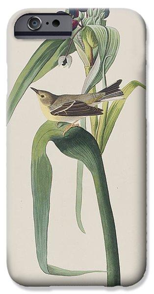 Vigor's Warbler IPhone 6s Case by John James Audubon