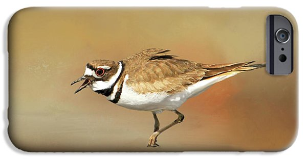 Wading Killdeer IPhone 6s Case by Donna Kennedy