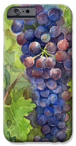 Watercolor Grapes Painting IPhone Case by Olga Shvartsur