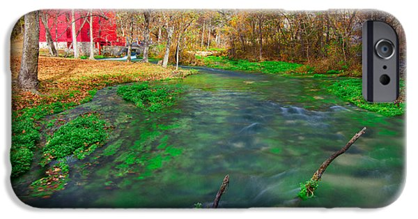 Watercress At Alley Spring  IPhone Case by Jackie Novak