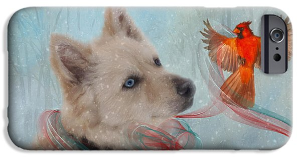 We Can All Get Along IPhone Case by Colleen Taylor
