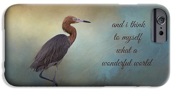 What A Wonderful World IPhone 6s Case by Kim Hojnacki