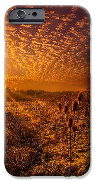 What Will Be Will Be IPhone Case by Phil Koch