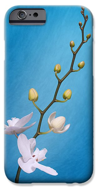 White Orchid Buds On Blue IPhone Case by Tom Mc Nemar