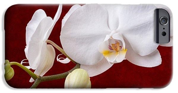 White Orchid Closeup IPhone Case by Tom Mc Nemar