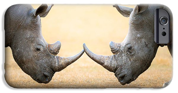 White Rhinoceros  Head To Head IPhone 6s Case by Johan Swanepoel