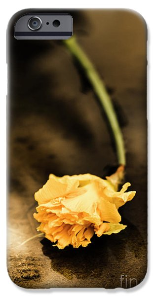 Wilting Puddle Flower IPhone Case by Jorgo Photography - Wall Art Gallery
