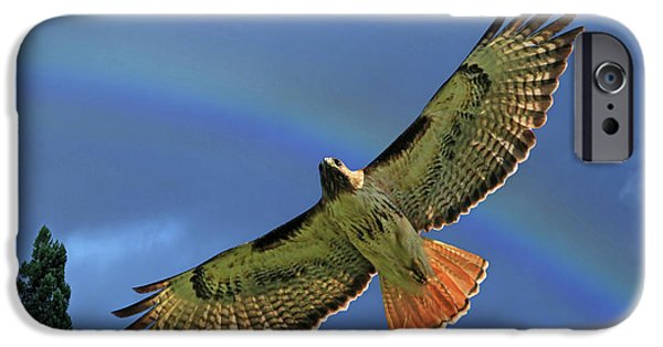 Wings 2 IPhone 6s Case by Donna Kennedy