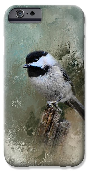 Winter Chickadee IPhone 6s Case by Jai Johnson
