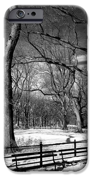 Winter Trees At The Mall IPhone 6s Case by John Rizzuto