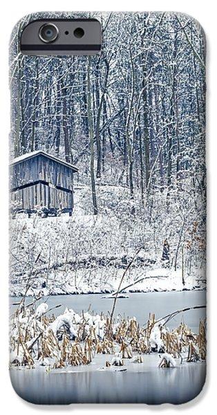 Winter Wonderland 1 IPhone Case by Shara Lee